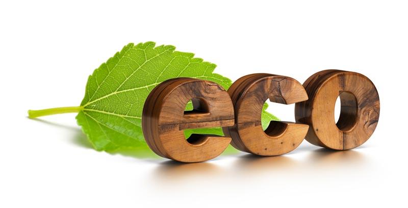 Woodville Design Ecologisch Bouwen Met Duurzame Materialen