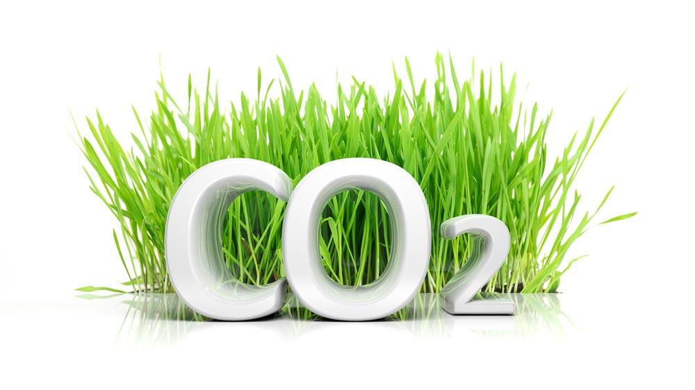 Woodville Design Ecologisch Bouwen Vermindering CO2 uitstoot